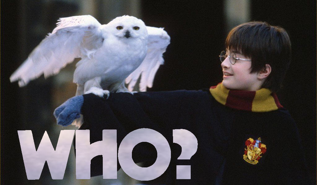 Harry Potter and Hedwig say who
