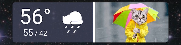Weather Whiskers widget